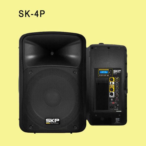 """SKP Pro Audio Loudspeaker 10"""""""